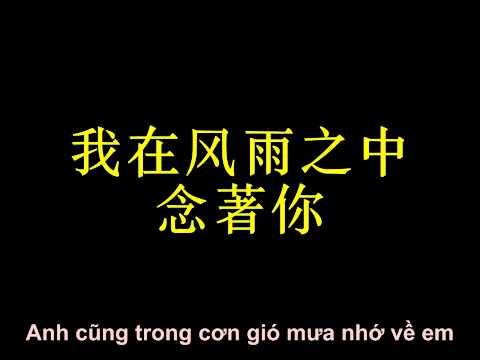 Say You Will - Tề Tần [大约在冬季 - 齐秦]