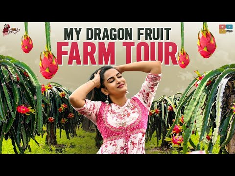 Himaja shares Dragon fruit farm tour; calls it a wonderful day in her life