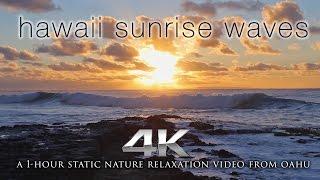 Waves 海浪聲 - 白噪音與自然音樂 情境音樂