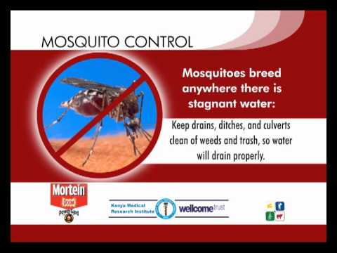 Tip 3: Mosquitoes habitats -- Where do they breed and how can you eliminate these habitats?