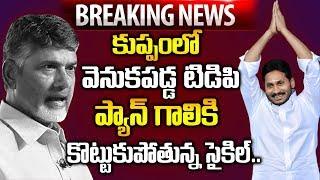 కుప్పలో వెనుకపడ్డ టీడీపీ   King Of Amaravathi Jagan   AP Election Results 2019 LIVE Updates