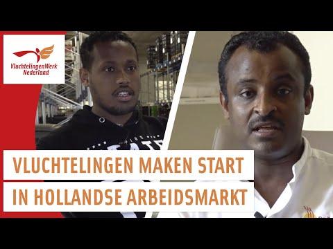 Project VIP 2 (Vluchtelingen Investeren in Participeren) | VluchtelingenWerk Nederland photo