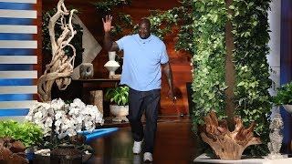 Shaq's Babysitting Gig Led to His Google Riches