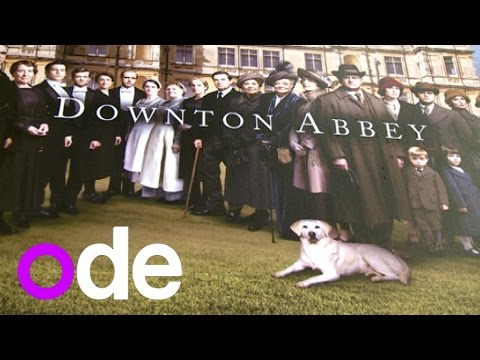 Downton Abbey Season 5: Cast time-travels with their characters to 2014