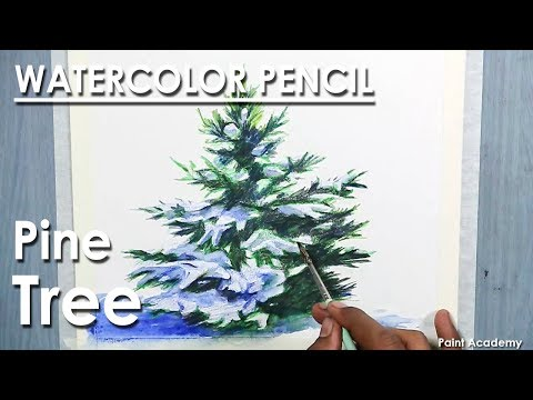 How to Draw A Pine Tree/ Christmas Tree in Watercolor Pencil