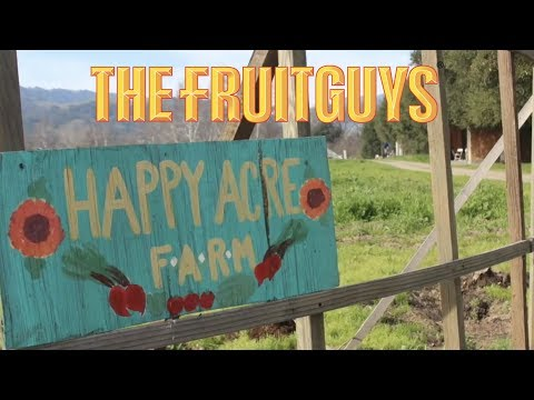 2015 Grantee Happy Acre Farm - The Fruitguys Community Fund