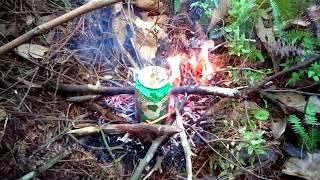 chia sẻ cách sinh tồn trong rừng.