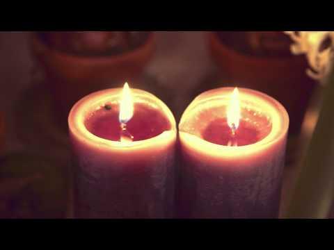 Amaryllis - Amaryllisens dag