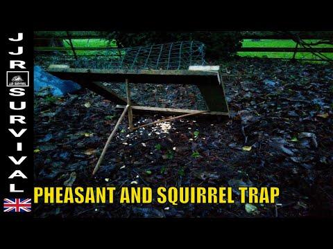 Pheasant & Squirrel Trap