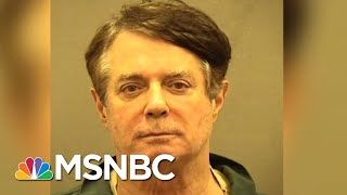 Robert Mueller Exposes Paul Manafort's Lavish Lifestyle | The Beat With Ari Melber | MSNBC