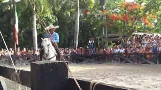 Show ecuestre,ruta de riviera maya,ixcaret ecuestre,vacaciones a caballo