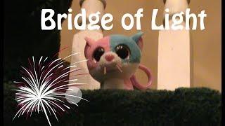 """Beanie Boo Music Video """"Bridge of Light"""" Happy New Year"""