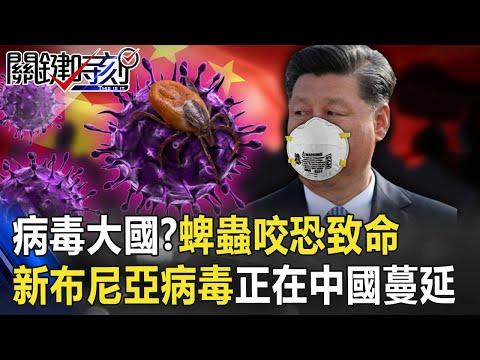 病毒大國?「蜱蟲」咬一口恐致命 「新布尼亞病毒」正在中國蔓延已7人死!【關鍵時刻】20200805-3 劉寶傑 陳耀寬