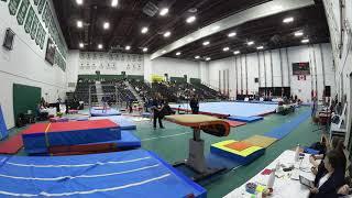 Kyla Dickson Level 9- Vault 2018 Eastern Canadian Championships