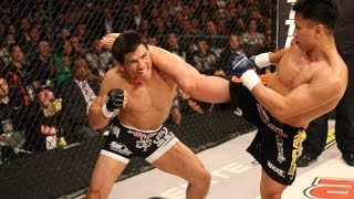 Cung Le - 11 Fights - All Strikes - Deadly Strikers - Part 2