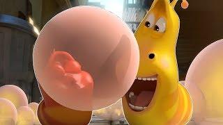 LARVA - GUM FART | Cartoons For Children | Larva Full Movie | Larva Cartoon | LARVA Official
