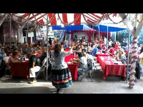 Jilguero del Huascaran - Bambacinita