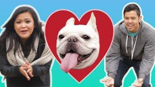The Ultimate Dog Loyalty Test
