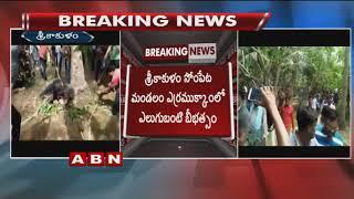 Bears Assault On Villages In Srikakulam : 1 Lost life : 6 ..