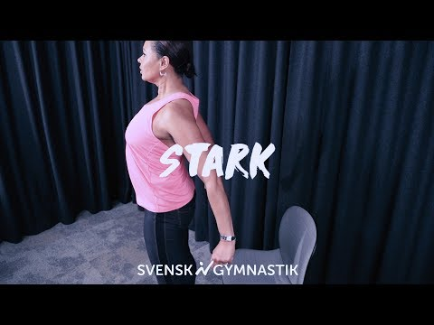Stark - Pausgympa