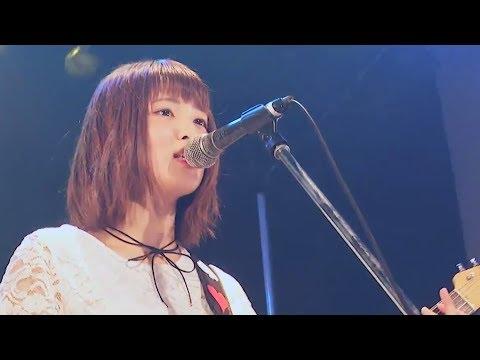 BabySitter - ハルウタ(Live Music Video)
