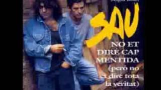 Les 20 millors cançons de SAU en imatges