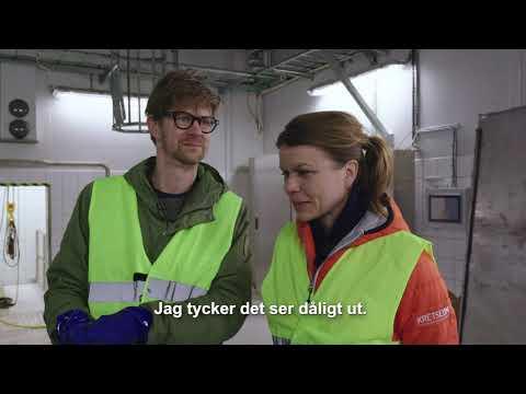Så funkar VA SYD med Anders & Måns, kortversion 2 avloppsrening