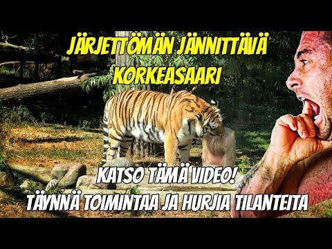 JÄRJETTÖMÄN JÄNNITTÄVÄ KORKEASAARI!