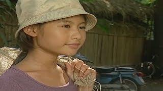 Có lẻ đây là bộ Phim lẻ Việt Nam lấy đi nước mắt của hàng nghìn Người
