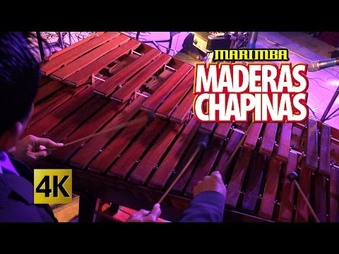 Marimba Maderas Chapinas - Concierto Orgullo Chapin / Calidad 4K
