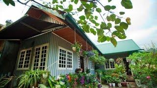 Nhà đẹp với Tôn - Thành Phố Hôm Nay [HTV9 – 25.03.2016]