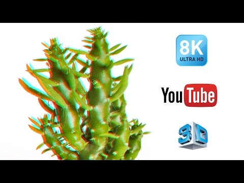 The World's First 8K 3D Video on YouTube by The Big Dot Company