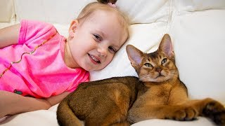 Gaby and Alex plays with funny kitten video for kids