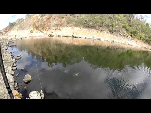 Bass on Foot - Part 2