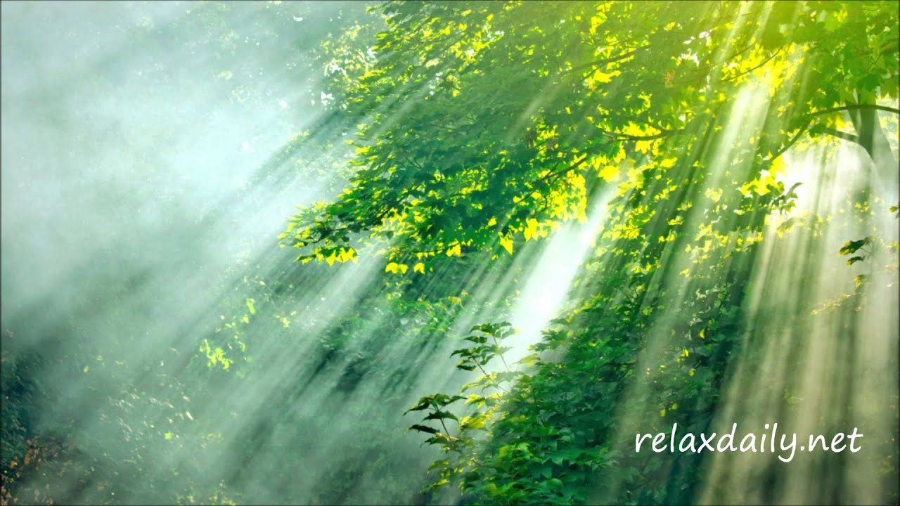 Relaxing Piano Music - work, study, meditation ...