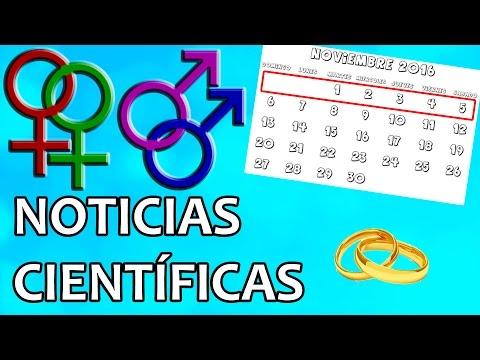 La homosexualidad de los padres no determina la conducta de los hijos | Noticias 7/11/2016