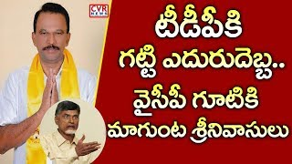 TDP MLC Magunta Srinivasulu Reddy Likely to Join YSRCP..