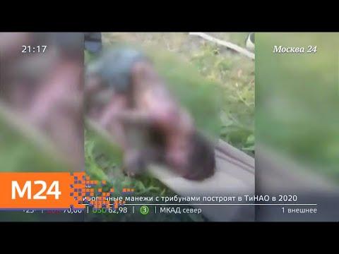 """""""Московский патруль"""": как бороться с кабельными ворами - Москва 24"""
