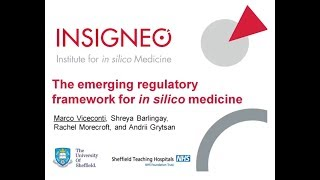 The emerging regulatory framework for in silico medicine