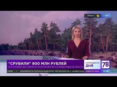 """""""Срубили"""" 900 млн рублей"""