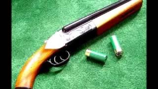 Satu senapang peluru dua...