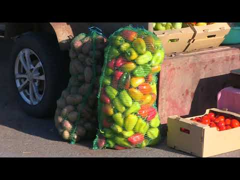 Сельскохозяйственная ярмарка, приуроченная к Дню работника сельского хозяйства