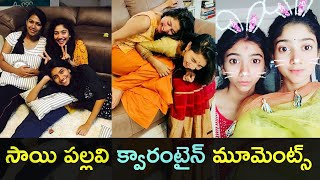 Watch: Sai Pallavi enjoying with her family best moments..