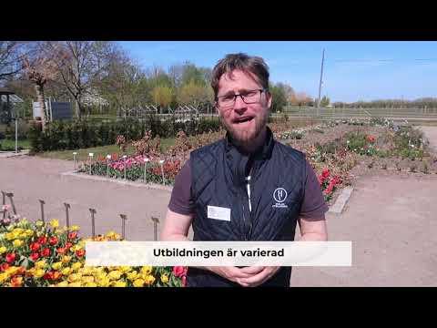 Hvilan Yrkeshögskola - Trädgårdsmästare