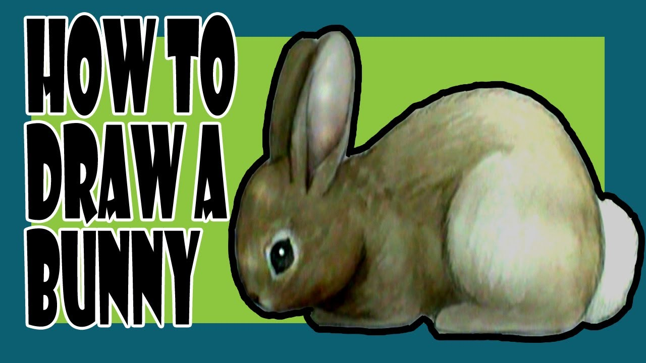 How to draw a bunny YouTube