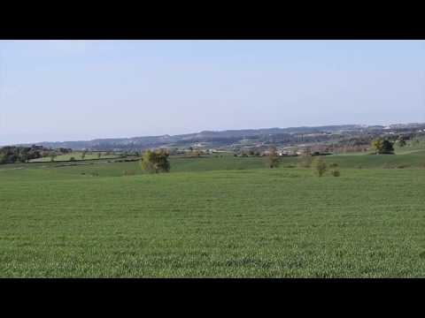 Retalls de la primavera segarra a Civit