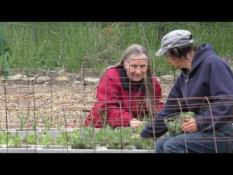 Adventures in High Performance Gardening | Week 9
