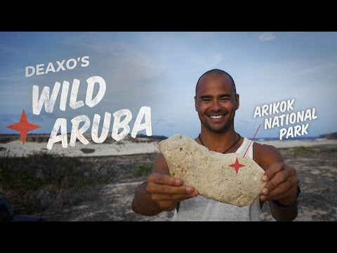 Aruba Local Tips: Secret Swimming Holes, Authentic Food and More!