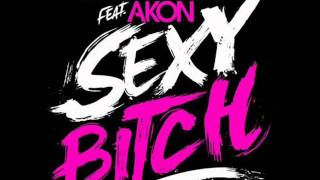 David Guetta ft Akon Sexy bich