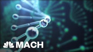 5 Groundbreaking Scientific Discoveries Of 2017 That Could Change Our Future   Mach   NBC News